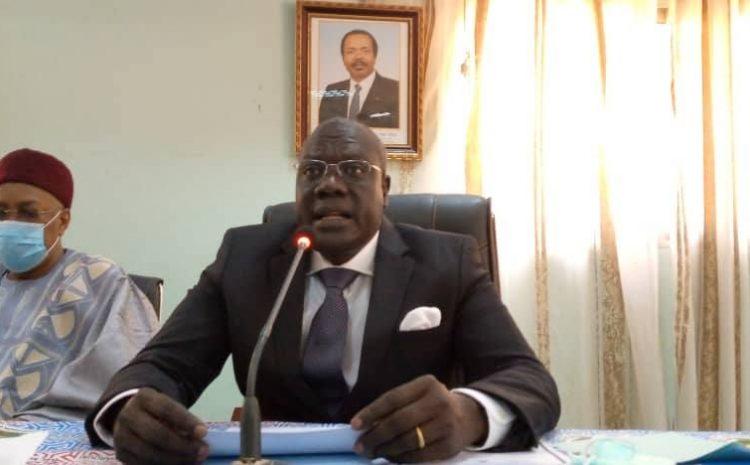 Cameroun – MINJEC : Concertation stratégique avec les CMJ en vue d'une collaboration symbiotique avec la jeunesse de Maroua